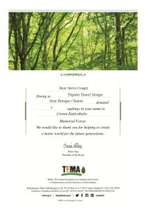 tema-certificate-environment-page